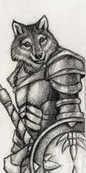 Wolf Warrior Bookmark Sketch - 2011
