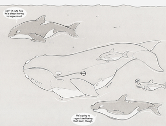 Ronas and the orcas 3