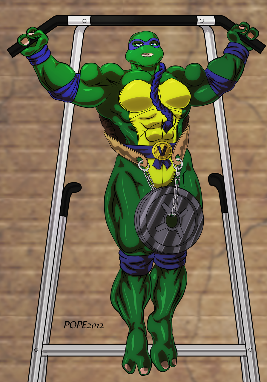 Turtle Muscle in a Half Shell Redux