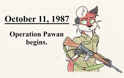 This Day in History: October 11, 1987