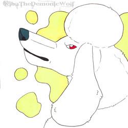 Bunch of Doggos - Poodle