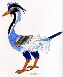 Imaginary Birds:  Allarok