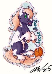 Cute badge cheesewheel