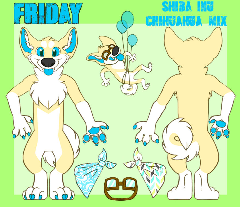 Friday Reference Sheet