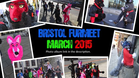 Bristol Furmeet March 2015 (Photo Album)