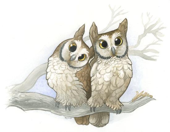 тату две совы картинка рисунок нестандартное