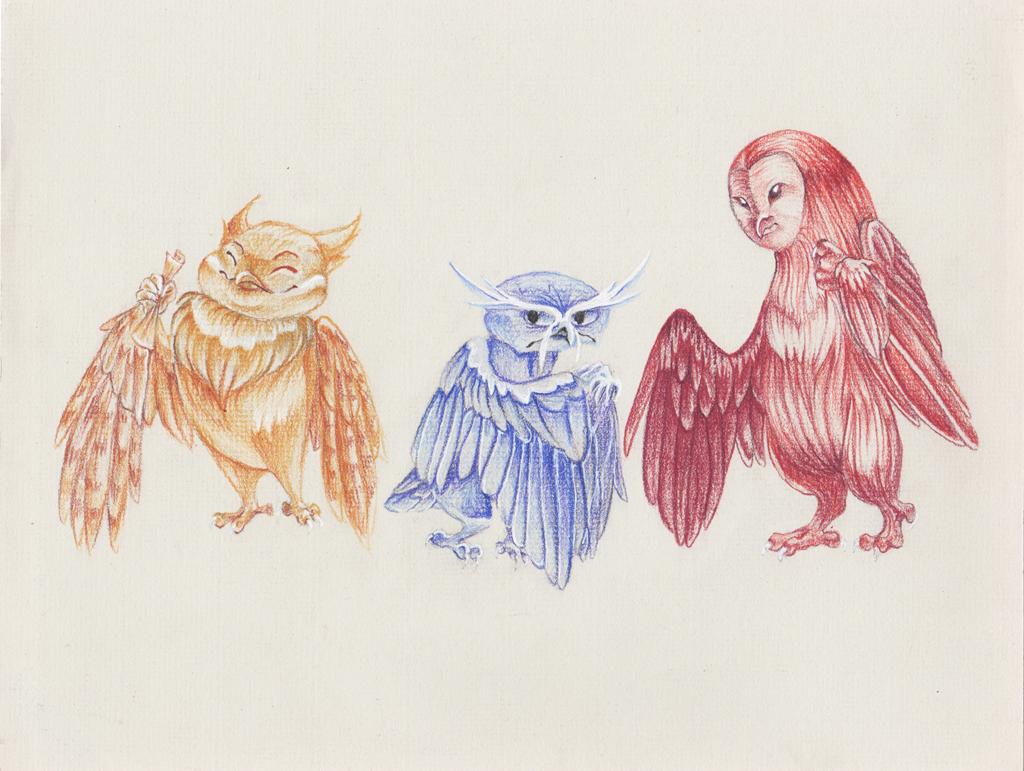Primary Owls