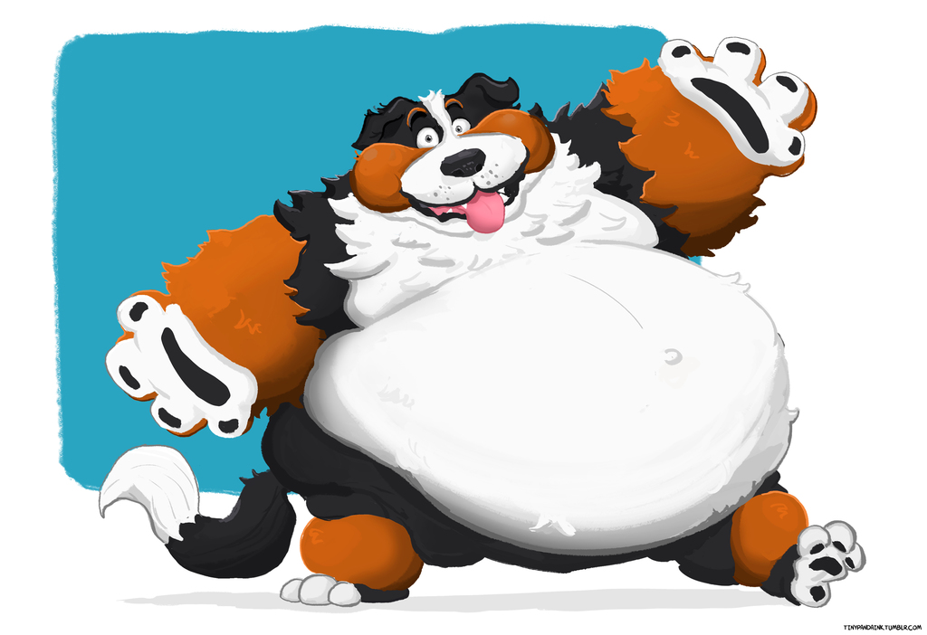 Most recent image: Big Doofy Dog