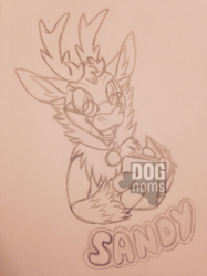 Commission-Sandy Badge by Lenore