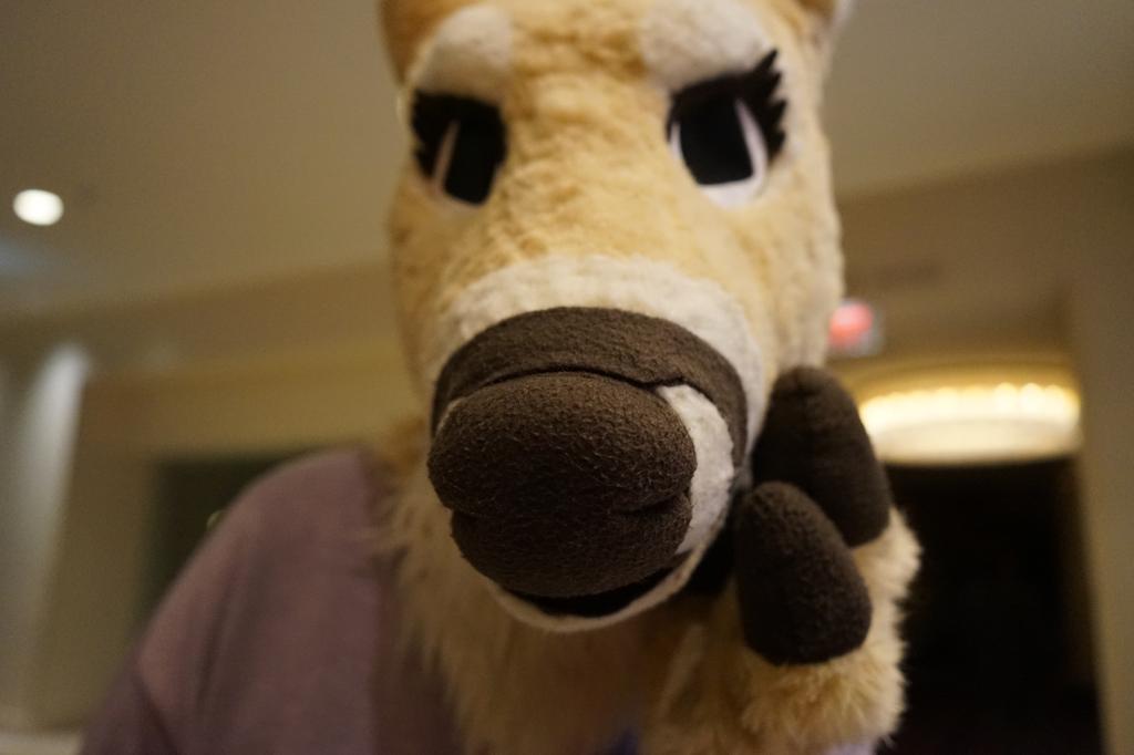 GENTLE Doe Nose