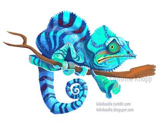 Nosy Be Chameleon