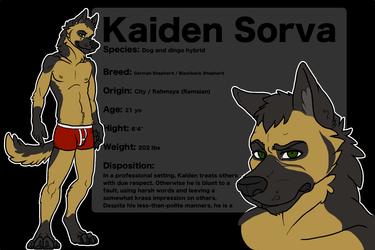 Kaiden Ref Sheet