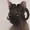 avatar of Safiru