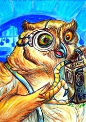 DASwap ACEO--Owl Gadgeteer