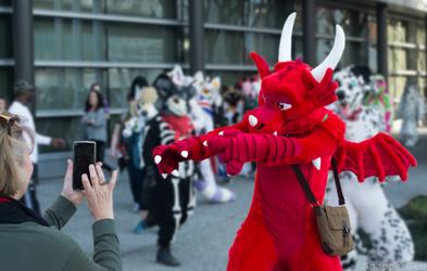 Capturing a Dragon