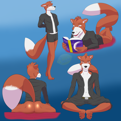 [ Multiple poses ] Smellyvulpine72