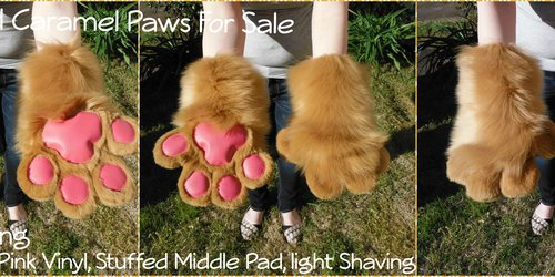 [PM]Caramel Paws for Sale! Slight Use