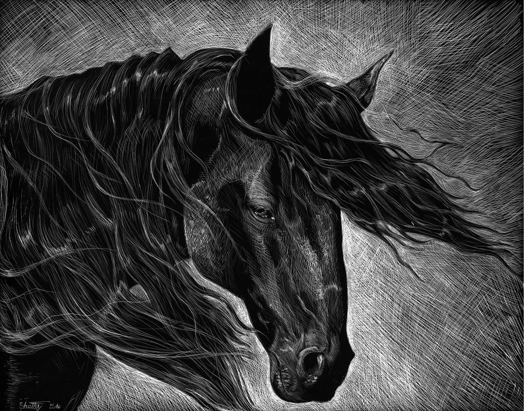 Scratchboard Horse in the Wind