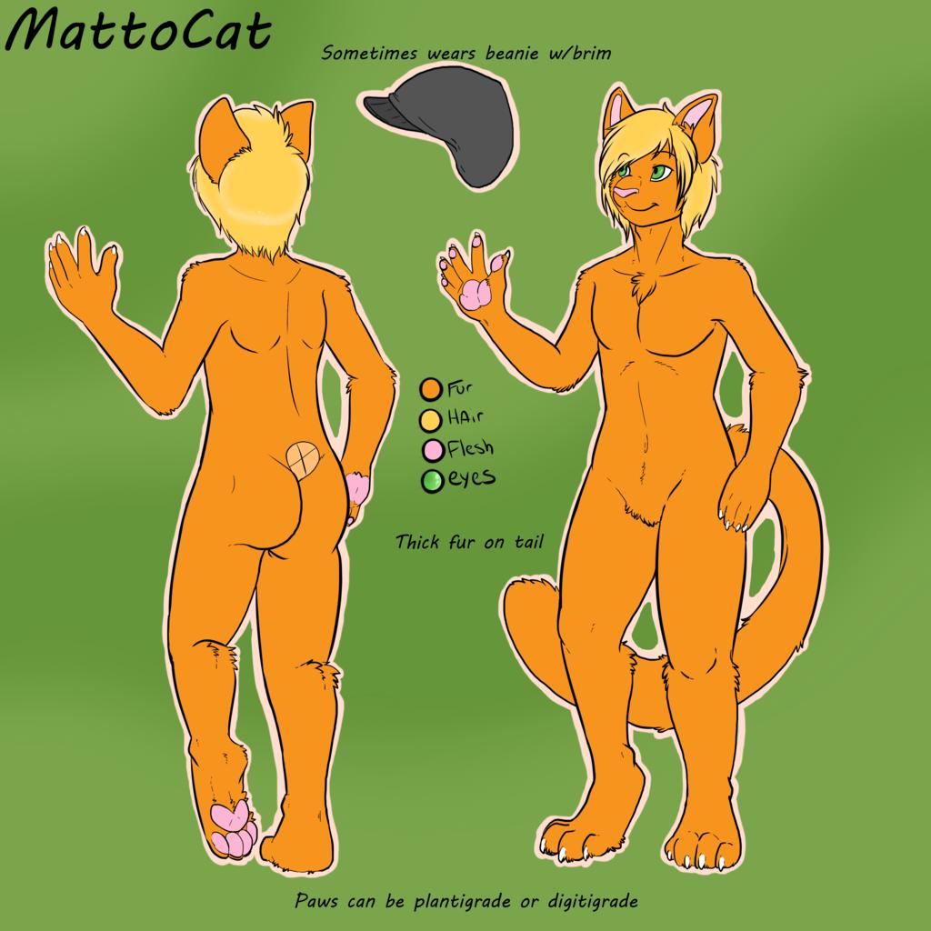 MattoCat Reference Sheet by Mander
