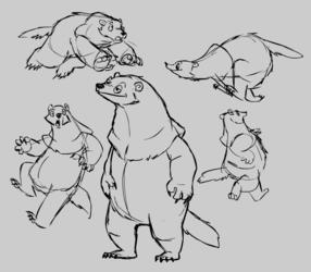 Chubby raccoon-bear-thing