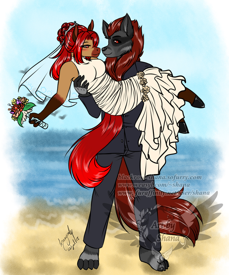 Most recent image: Demillion commission - Wedding day