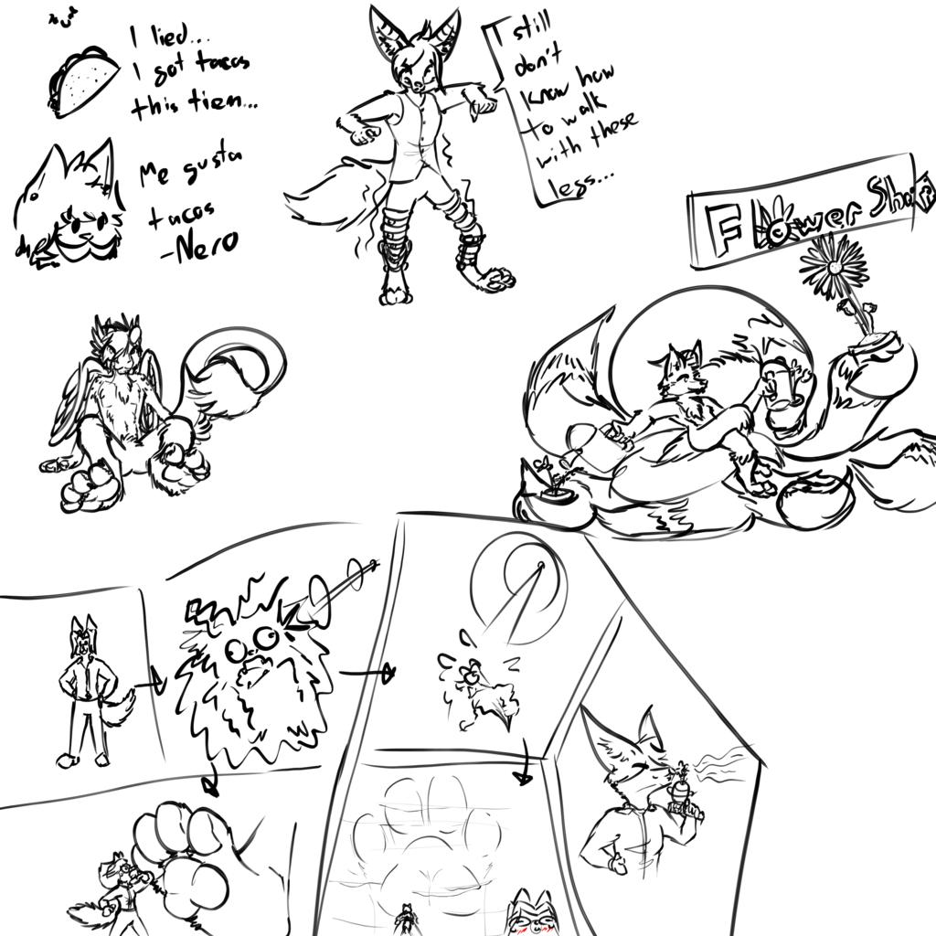 Stream Sketches [4/29/19]