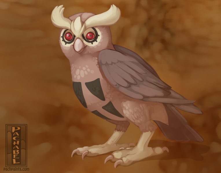Most recent image: (1 hr) Warm Up 164 - Noctowl
