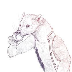Warwick Sketch3