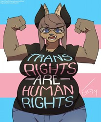 Trans Rights are Human Rights!