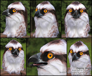 Lett the Osprey (Mask)