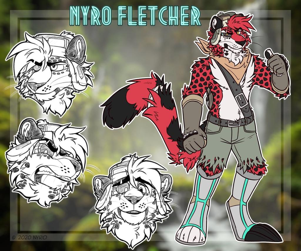 Nyro Character Sheet