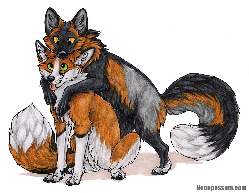 Fox Friends