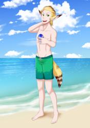 Fennecat Beach