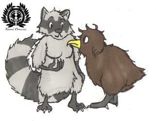 The Raccoon and the Kiwi