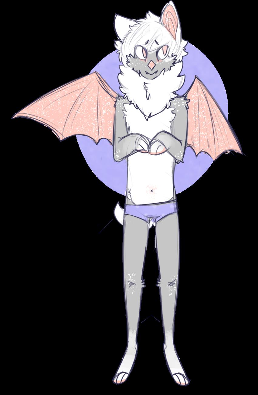 house cat bat