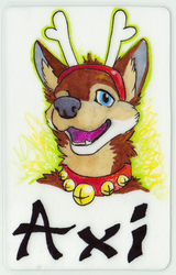 MFF 2014 Badge
