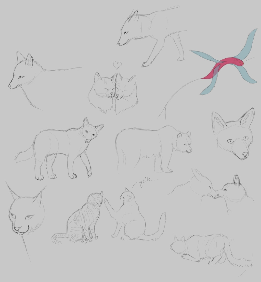 animal variety pack