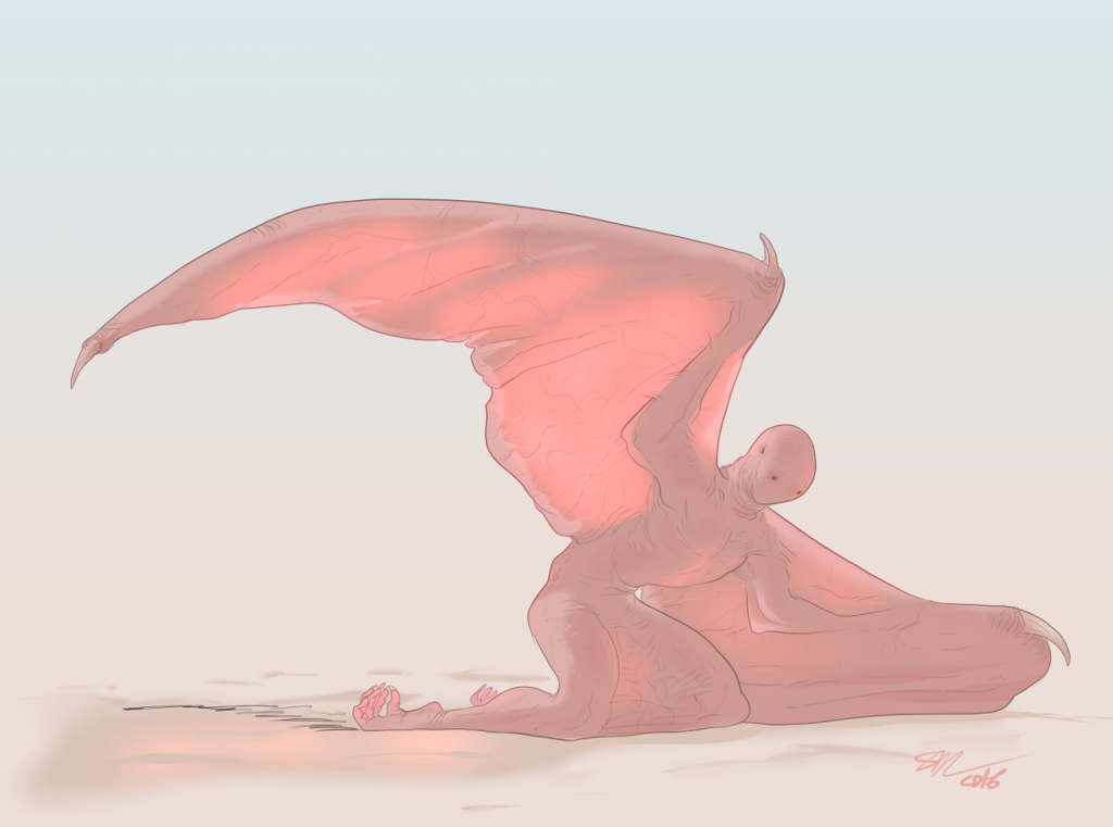 meat wings