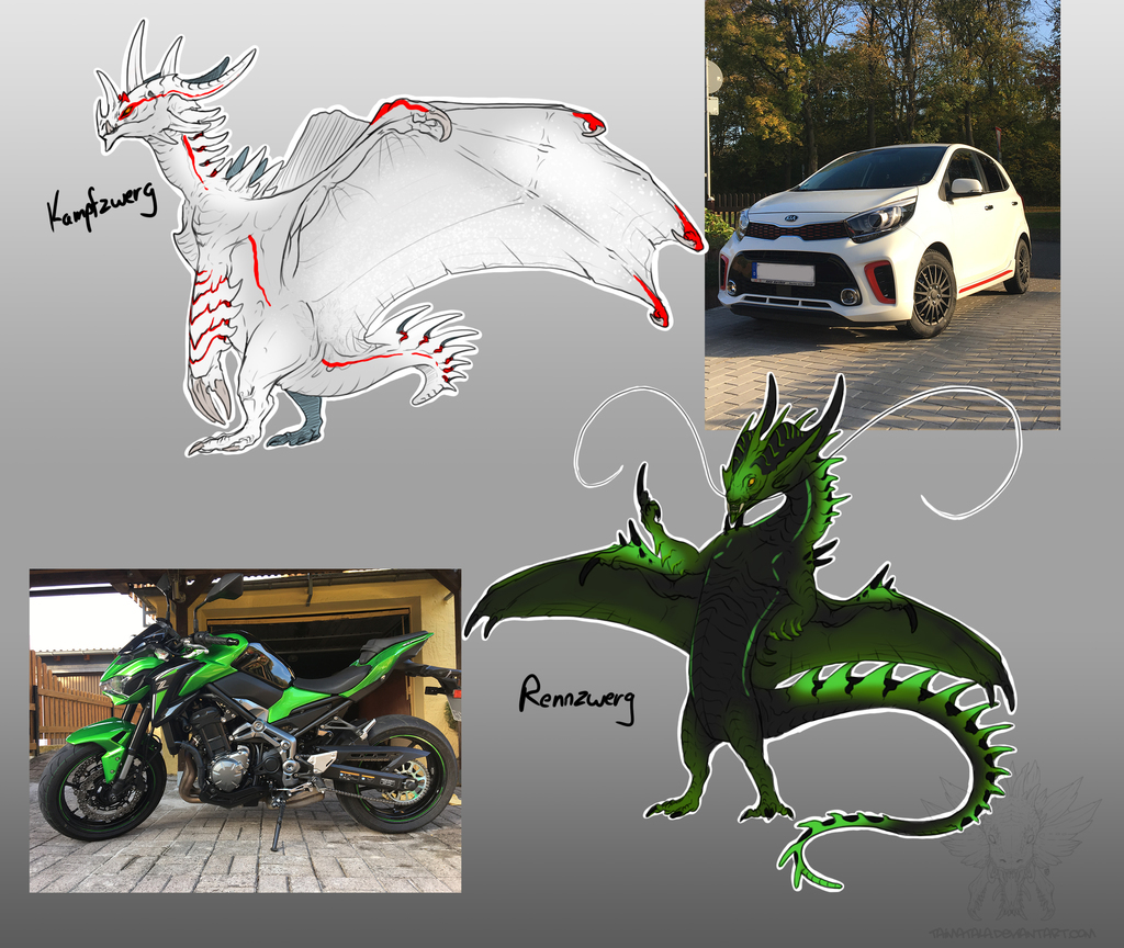 My Car and Motorcycle as Dragons