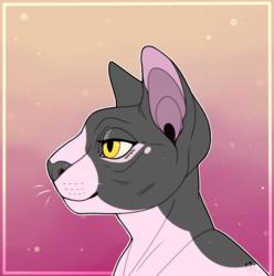 A Special Kitten [Artfight 2019]