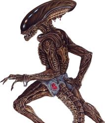 Sexyhexy Hotpants-Alien