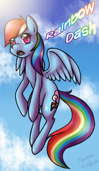 Dash In To The Sky