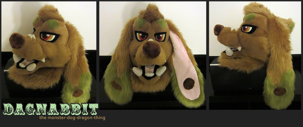 Dagnabbit's Head!