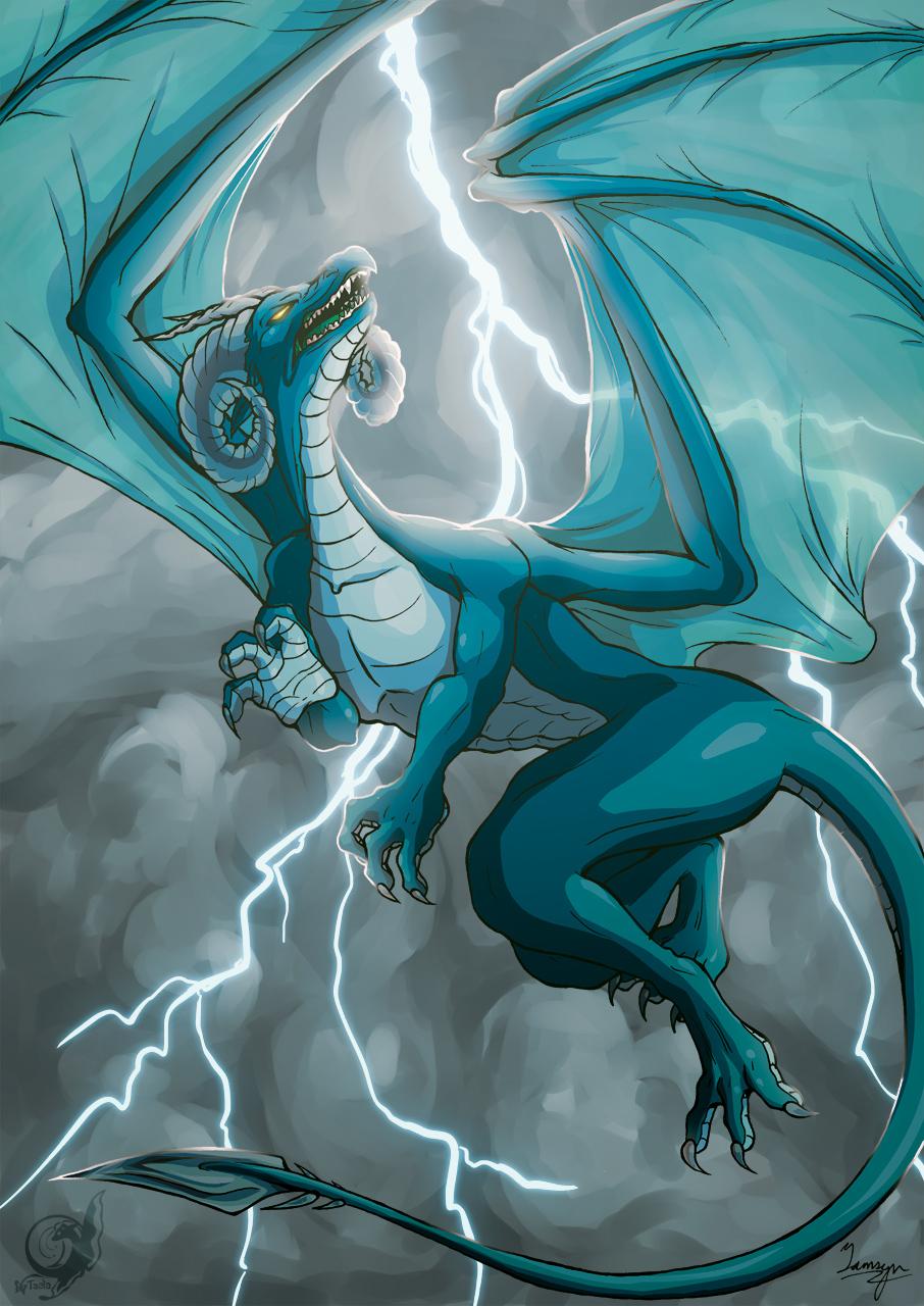 Echelon the Dragon