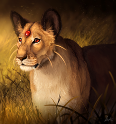 Wild Jewel