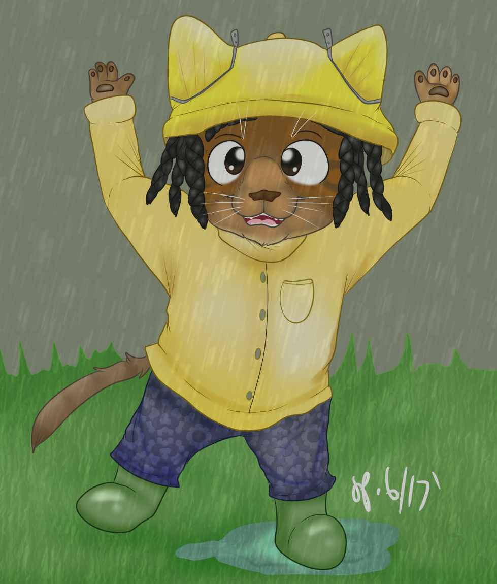 Playing in the Rain Puddles Redo (June 2017)