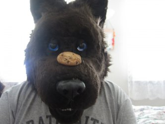 Cookie on my Nose