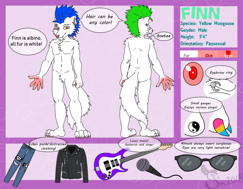 Reference Sheet: Finn