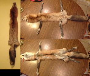 Dakota Gold Pearl Fox Pelt