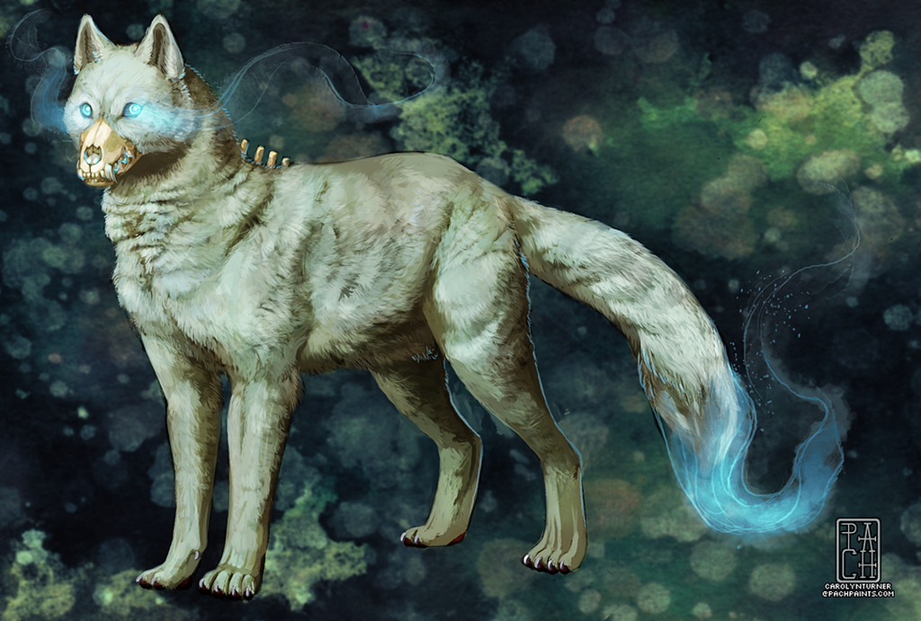 Canis Corpus - Shehk Iordanescu